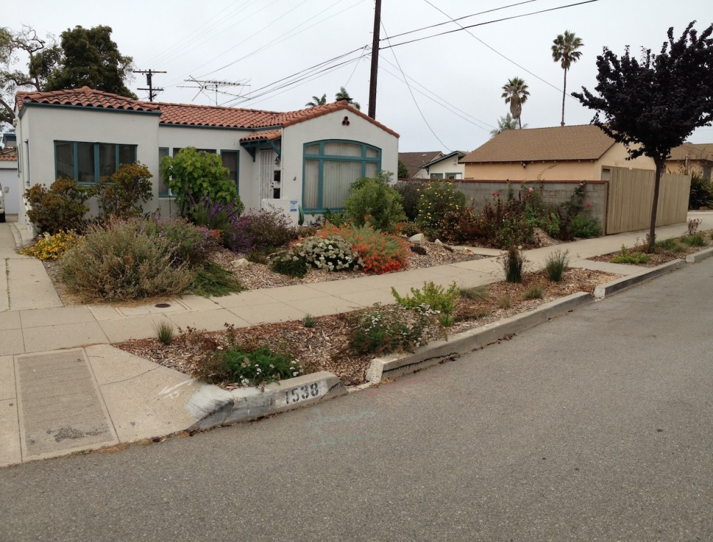 A house after the Ocean Friendly Garden is installed. The soil is gently contoured to support native plants. The sidewalk is still accessible. The flowers are blooming red and orange and purple.