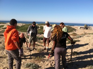 Dave and Paul talk with folks among the vegetation at Surfers' Point in Fall 2013