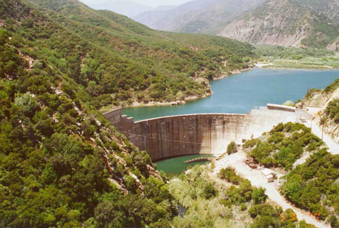 Matilija Dam blocking the river, with a shallow reservoir of silt and water behind (Credit: Matilija Coalition)