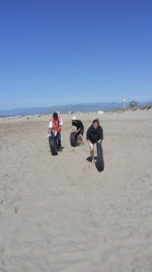 CSU Channel Islands volunteers remove car tires from the beach.
