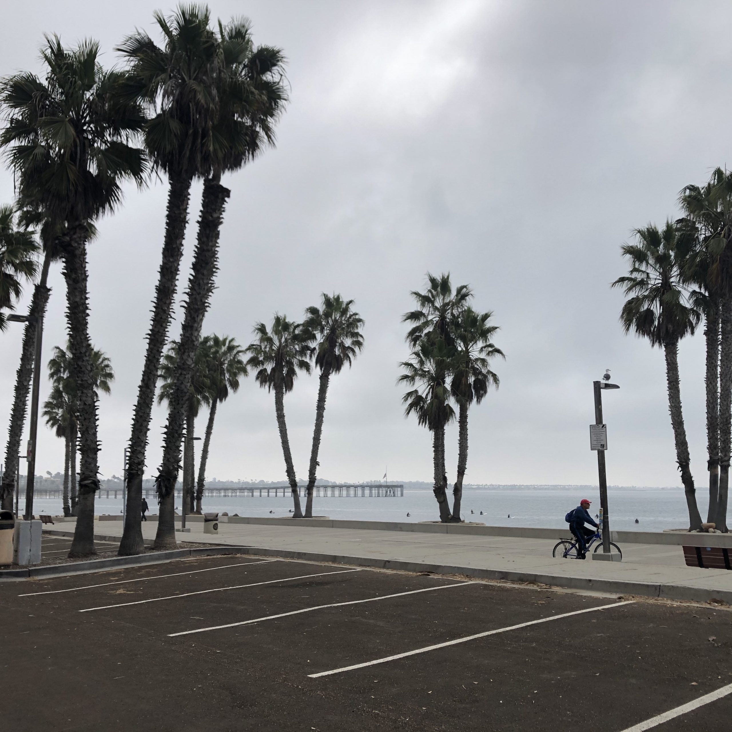 Surfers' Point Parking Updates