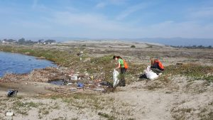 Volunteers clean up a particularly littered section of Ormond Beach.